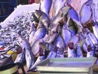Havaların serinlemesiyle balık satışları arttı