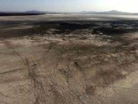 'Kuş cenneti' Seyfe Gölü çöle döndü