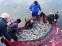 İznik Gölü'nde gümüş balığı sezonu kapanıyor