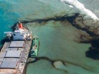 Japonya, Morityus'taki çevre felaketi için heyet gönderecek