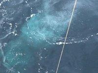 Akademik Keldysh isimli Rus araştırma gemisi buldu: Ciddi iklim sonuçları doğurabilir!