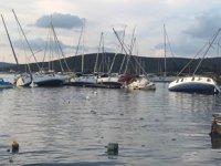 Sahil Güvenlik Komutanlığı, Seferihisar'daki tsunaminin bilançosunu açıkladı