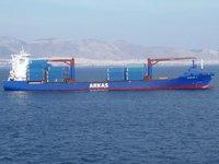 Arkas'tan Alman askerlerinin Rosaline A konteyner gemisinde arama yapmasına ilişkin açıklama geldi