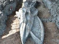 Tayland'da binlerce yıllık 'Bryde balinası' iskeleti bulundu