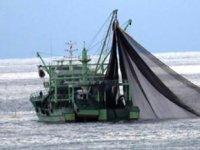 150 balıkçı teknesine kaçak avlanma nedeniyle el konuldu