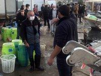Aydın'da deniz patlıcanı avcılığı devam ediyor