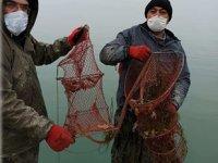 Eğirdir Gölü'nde 820 adet kerevit pinterine el konuldu