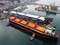 Hopaport, 11 ayda 189 adet gemi ağırladı