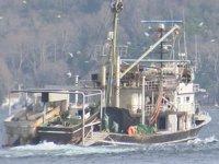 Kurallara uymayan 71 tekneye el koyuldu
