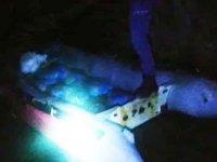 Enez'de terkedilmiş botta 1.5 ton kaçak midye ele geçirildi