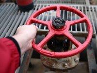 Türkiye'de geçen yıl 50 milyar metreküp doğalgaz sisteme girdi