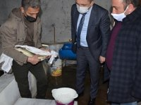 Şırnak'taki tek balık tesisi 5 aileye ekmek kapısı oldu