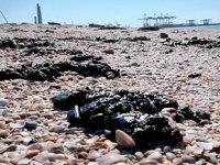 İsrail'de petrol sızıntısı çevre faciasına yol açtı
