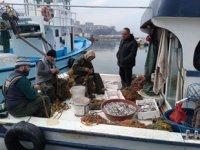 Zonguldaklı balıkçıların yüzünü mezgit güldürdü