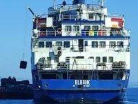 Hasta hayvan yüklü gemi, Kıbrıs'ta panik yarattı