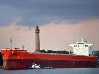 Hoa Phat, kömür ve demir cevheri nakliyatı için 2 adet gemi satın aldı