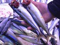 Tezgâhların en ucuz balığı uskumru oldu