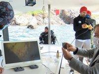Koruma alanı ilan edilen Tavşan Adası çevresinde keşif dalışı yapıldı