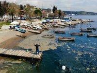 Deniz yüzeyini kaplayan plankton patlaması, balıkçı ağlarına zarar verdi