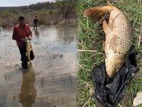 Terkos Gölü'nde yasa dışı balık avına 14 bin lira ceza kesildi