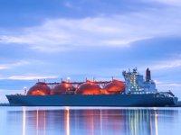 Küresel LNG ithalatı 2020 yılında arttı