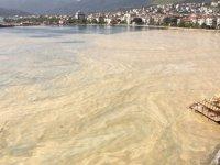 Marmara'daki deniz salyasına karşı çalışma başlatıldı
