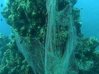Denizlerden geçen yıl 10 bin metrekare hayalet ağ çıkarıldı