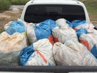 Kaçak avlanmış 1.5 ton inci kefali ele geçirildi