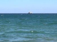 Marmara'da deniz salyası rüzgarın etkisiyle dağıldı