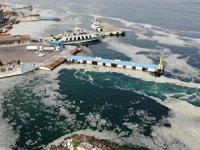 Uzmanlar, müsilaj olan bölgelerde denize girilmemesi uyarısı yaptı