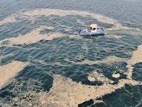 Deniz salyası, gübre, tarım ilacı ve temizlik malzemesi olarak kullanılacak