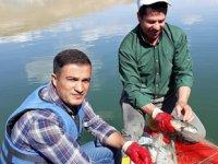Sazangillerin av yasağı devam ediyor