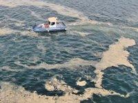 Deniz salyası ile mücadele için çalışma başlatıldı