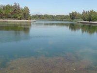 Titreyengöl'de su seviyesi düştü, balıklar ölmeye başladı