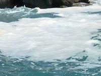 İskenderun'da köpüren deniz suyu endişe yarattı