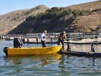 Erzurum'da balık üretiminin 7 bin tona çıkarılması planlanıyor