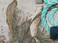 Kaçak balık avcılarına karşı denetimler sürüyor