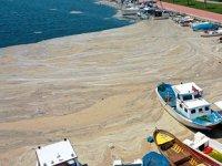 Müsilaja karşı Marmara'ya 'nefes' takviyesi yapılacak