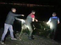 Van Gölü'nde kaçak avlanmış 2 ton inci kefali ele geçirildi
