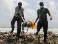 Sri Lanka'daki gemi yangını, çevre felaketine yol açtı