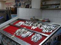 Balıkçılar, son yılların en sakin yaz dönemini yaşıyor