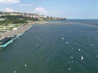 Marmara Denizi'nde yeni bir müsilaj oluşumu beklenmiyor