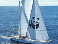 Akdeniz'i kurtarmak için 'hayalet ağlar'a karşı yelken açıldı