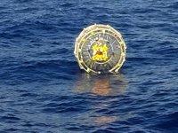 Hamster tekerleği okyanusa 'takıldı'
