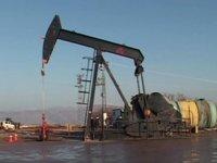 Türkiye Petrolleri, Siirt'te petrol arayacak