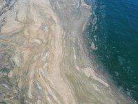 Deniz salyası, biyolojik arıtma ile sonlandırılacak