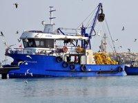 Marmara Denizi'nde dökme avcılık yasaklandı