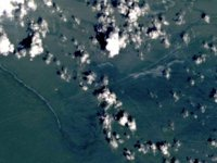 İda Kasırgası nedeniyle petrol sızıntısı meydana geldi