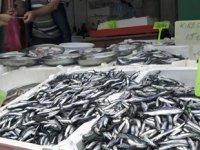Balıkçılar, hamsi sezonunun erken bitmesinden endişe ediyor