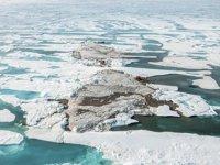 Dünyanın en kuzeyindeki ada keşfedildi